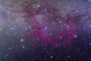 The Extensive Gum Nebula Area in the Constellation Vela