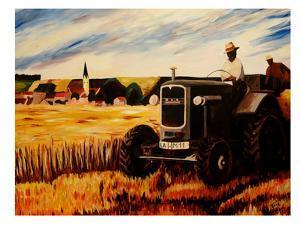 The Farmer by M Bleichner
