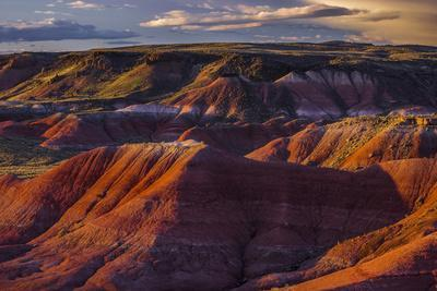 https://imgc.allpostersimages.com/img/posters/the-fiery-red-painted-desert-from-lacey-point-in-petrified-forest-national-park-arizona_u-L-Q12TA8H0.jpg?artPerspective=n
