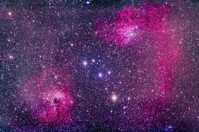 https://imgc.allpostersimages.com/img/posters/the-flaming-star-nebula-in-auriga_u-L-PU243M0.jpg?artPerspective=n
