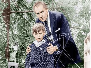 The Fly, Charles Herbert, Vincent Price, 1958