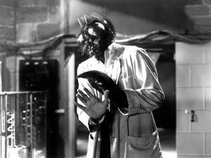 The Fly, David Hedison, 1958