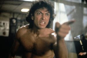 The Fly (photo)