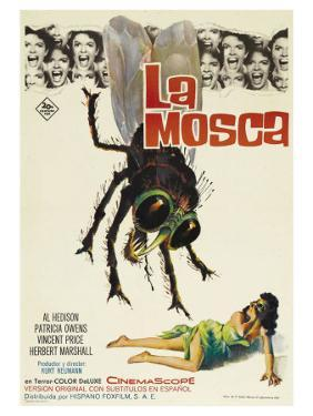 The Fly, Spanish Movie Poster, 1958