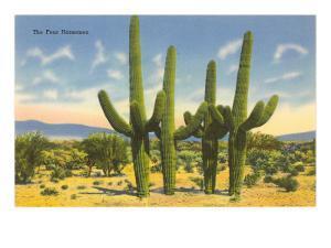 The Four Horsemen, Saguaro Cacti