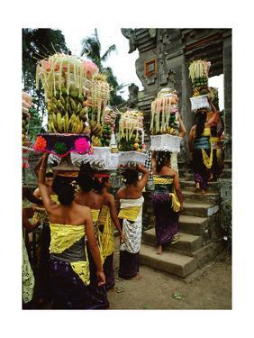 The Galungan Festival