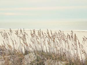 Sea Oats by The Gingham Owl