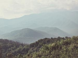 Summer In The Smoky Mountains by The Gingham Owl