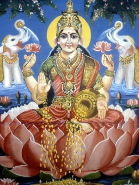 The Goddess Lakshmi