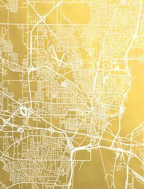 Jackson Mississippi by The Gold Foil Map Company