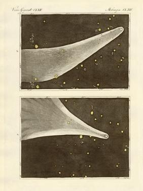 The Great Comet of the Year 1811