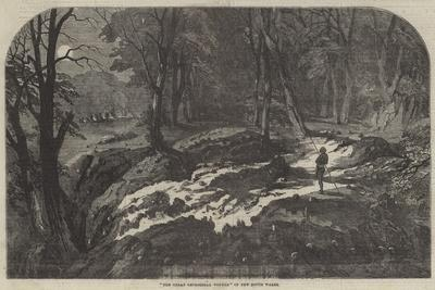https://imgc.allpostersimages.com/img/posters/the-great-geological-wonder-of-new-south-wales_u-L-PVWE070.jpg?p=0