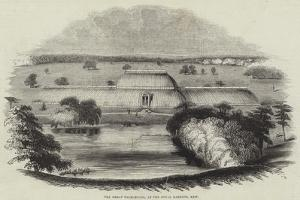 The Great Palm-House, at the Royal Gardens