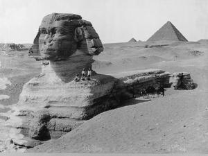 The Great Sphinx in the Desert