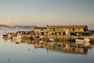 https://imgc.allpostersimages.com/img/posters/the-harbour-at-lyme-regis-taken-from-the-cobb-dorset-england-united-kingdom-europe_u-L-PNGLCK0.jpg?p=0