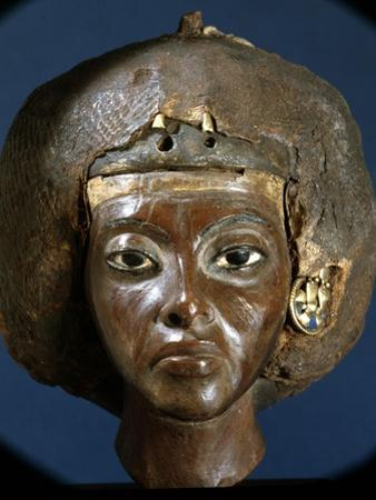 The Head of Queen Tiye, Wife of Amenophis III and Mother of Akhenaten