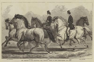 https://imgc.allpostersimages.com/img/posters/the-horse-show-at-the-agricultural-hall-islington-parade-of-prize-horses-trotters-and-hacks_u-L-PUSKDV0.jpg?p=0