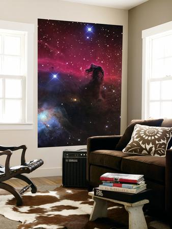 https://imgc.allpostersimages.com/img/posters/the-horsehead-nebula_u-L-PFHCH20.jpg?artPerspective=n