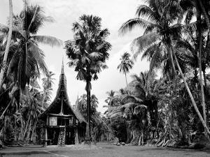 The House Tamberan of Kanganama on the Sepik River, Papua New Guinea, 1974