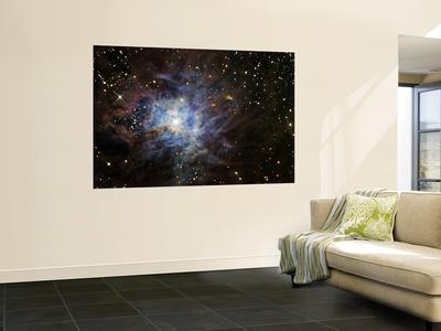 https://imgc.allpostersimages.com/img/posters/the-iris-nebula_u-L-PFHCHI0.jpg?artPerspective=n