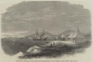 The Isle of Mussowah, in the Red Sea, the Head-Quarters of the Abyssinian Relief Mission