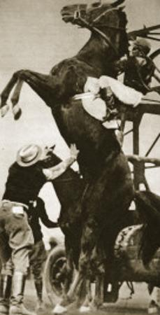 The Jockey Herbert Loses Control of His Horse at the Start of a Race in New York
