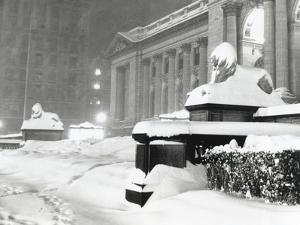 The Lion Statues at the New York Public Library Covered with Snow During the Record Snowfall