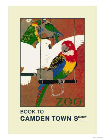https://imgc.allpostersimages.com/img/posters/the-london-zoo-exotic-birds_u-L-P2D1480.jpg?artPerspective=n