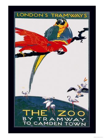 https://imgc.allpostersimages.com/img/posters/the-london-zoo-the-macaw_u-L-P2D1CH0.jpg?artPerspective=n