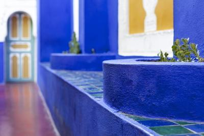 https://imgc.allpostersimages.com/img/posters/the-majorelle-gardens-marrakech-morocco-north-africa-africa_u-L-PNFYZP0.jpg?artPerspective=n