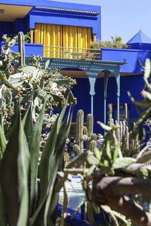 https://imgc.allpostersimages.com/img/posters/the-majorelle-gardens-marrakech-morocco-north-africa-africa_u-L-PNFZ0D0.jpg?artPerspective=n