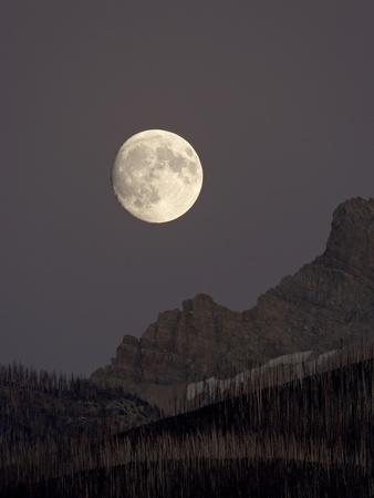 https://imgc.allpostersimages.com/img/posters/the-moon-rising-glacier-national-park-montana-usa_u-L-PFN9ZU0.jpg?p=0