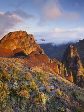 https://imgc.allpostersimages.com/img/posters/the-morning-sun-in-the-pedra-riga-and-pico-gato-vegetation-arieiro-madeira-portugal_u-L-Q11YZPW0.jpg?artPerspective=n