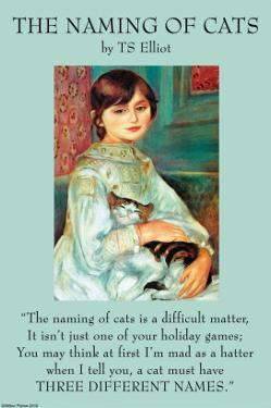 The Naming of Cats