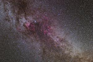 The North America Nebula and Dark Nebulae in Cygnus