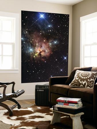 https://imgc.allpostersimages.com/img/posters/the-northern-trifid-nebula_u-L-PFHCHE0.jpg?artPerspective=n