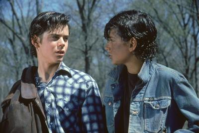 https://imgc.allpostersimages.com/img/posters/the-outsiders-1982-directed-by-francis-ford-coppola-thomas-c-howell-and-ralph-macchio-photo_u-L-Q1C1PFP0.jpg?artPerspective=n