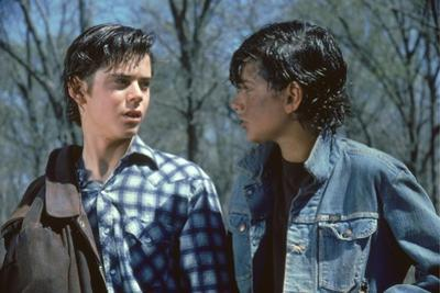 THE OUTSIDERS, 1982 directed by FRANCIS FORD COPPOLA Thomas C. Howell and Ralph macchio (photo)