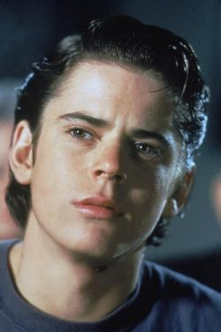 THE OUTSIDERS, 1982 directed by FRANCIS FORD COPPOLA Thomas C. Howell (photo)