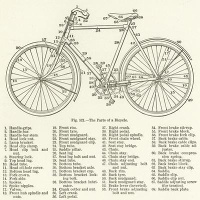 The Parts of a Bicycle