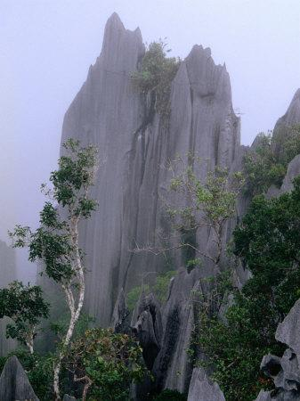 https://imgc.allpostersimages.com/img/posters/the-pinnacles-limestone-fores-from-the-lookout-on-gunung-api-gunung-mulu-np-sarawak-malaysia_u-L-P4FSYD0.jpg?p=0