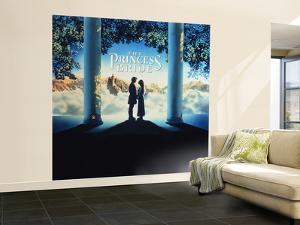 The Princess Bride Video Cover