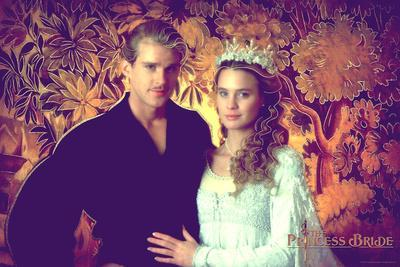 https://imgc.allpostersimages.com/img/posters/the-princess-bride-westley-and-buttercup_u-L-Q1BO3R80.jpg?artPerspective=n