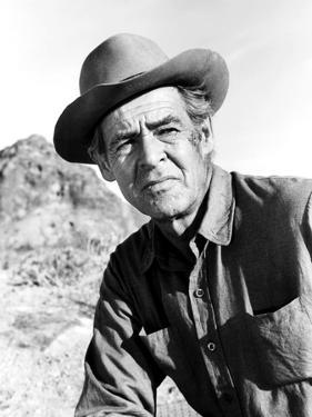 The Professionals, Robert Ryan, 1966