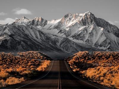 https://imgc.allpostersimages.com/img/posters/the-road-1_u-L-Q1G60DW0.jpg?p=0