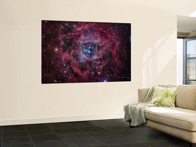 https://imgc.allpostersimages.com/img/posters/the-rosette-nebula_u-L-PFHCJ00.jpg?artPerspective=n