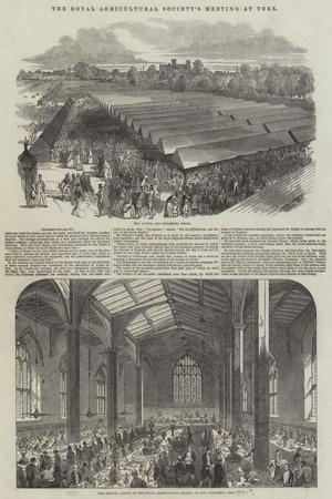 https://imgc.allpostersimages.com/img/posters/the-royal-agricultural-society-s-meeting-at-york_u-L-PVWCFY0.jpg?p=0