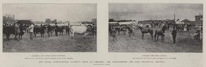 The Royal Agricultural Society's Show at Carlisle, the Sixty-Fourth and Last Provincial Meeting