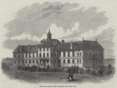 https://imgc.allpostersimages.com/img/posters/the-royal-surrey-county-hospital_u-L-PVM7CE0.jpg?artPerspective=n
