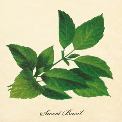 Basil by The Saturday Evening Post